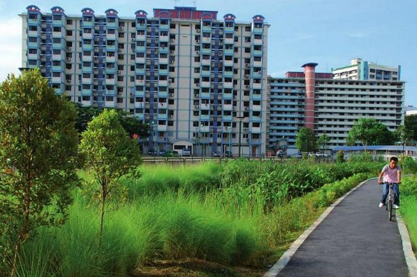 The rain garden at Balam Estates treats stormwater run-off before discharging the water into the neighbouring canal. -- PHOTO: SCREENGRAB OF HDB'S LANDSCAPE GUIDE