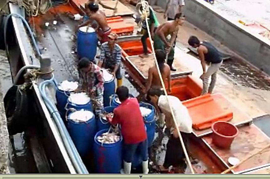 Fishing boat workers unloading their catch in Ranong, Thailand, in a still image taken from video. The isolation, relentless pace and harsh conditions on such boats have led many to shun such work, creating demand for forced labour. -- PHOTO: SPH