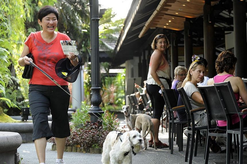 Casa Verde, a casual all-day dining cafe owned by F&B group Les Amis is located at the Visitor Centre of the Singapore Botanic Gardens.The National Heritage Board and the National Parks Board are seeking public feedback ahead of their bid t