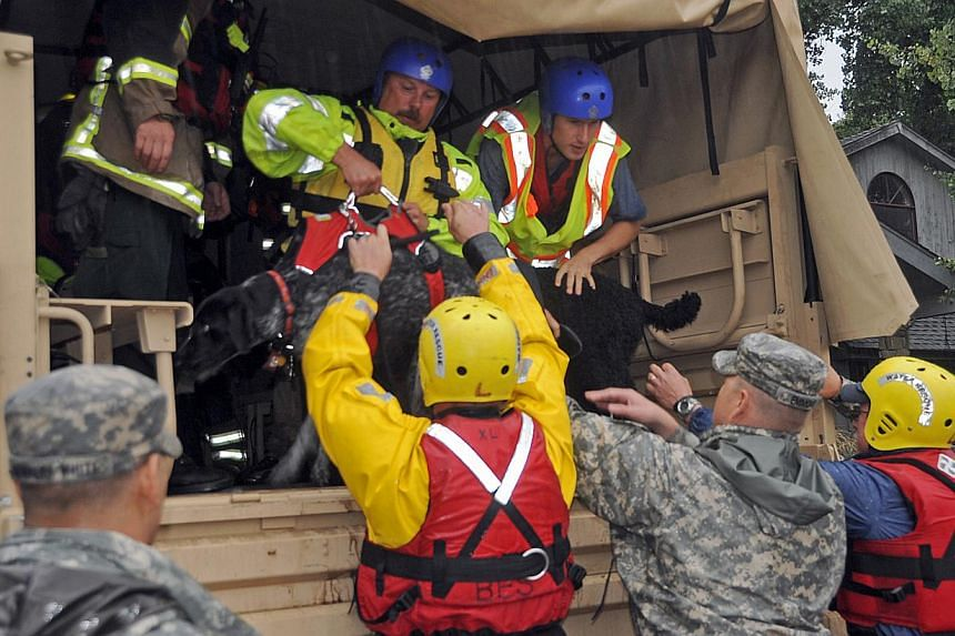 Colorado National Guardsmen place a dog into a high-clearance military vehicle as they rescue people and pets stranded by flooding in Lyons, Colorado, on Sept 12, 2013, in this photo provided by the Colorado National Guard. Thousands more people in C