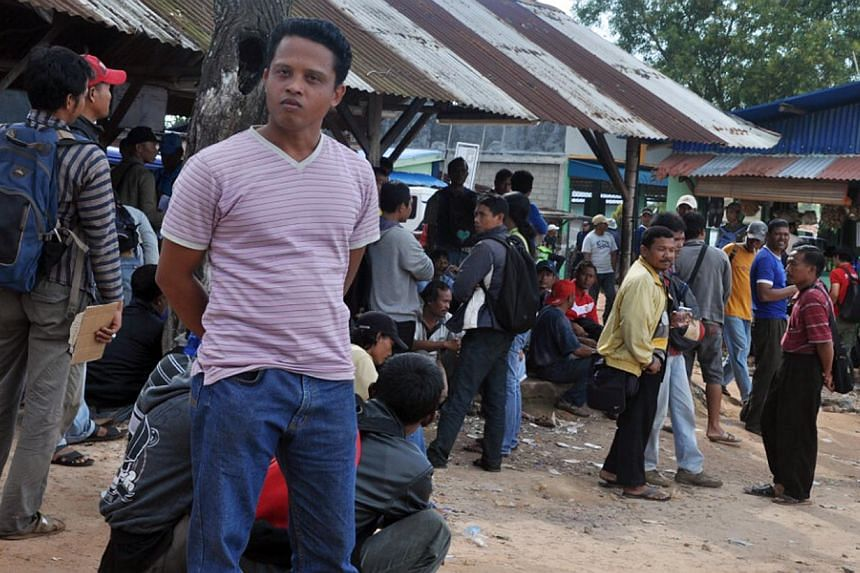 One of the 165 workers on strike at a pig farm in Pulau Bulan, near Batam. Concerns over pork supply to Singapore have eased for now with the end of a six-day strike at an Indonesian farm that is the second-biggest supplier of live pigs to the city-s
