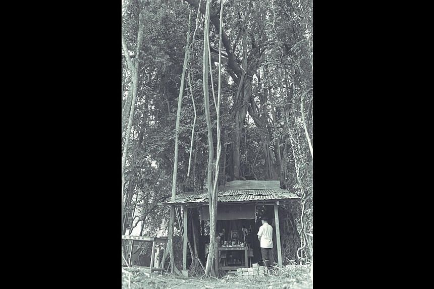 LONG LEGACY: The shrine was set up in the late 1960s. -- ST FILE PHOTO