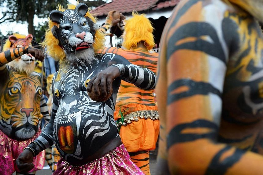 "More than 300 mainly pot-bellied men painted as leopards and tigers roamed the streets of Thrissur in the southern Indian state of Kerala performing the ""Puli Kali"", or cat play, on Sept 19, 2013, the 4th day of Onam, an annual harvest festival. See"