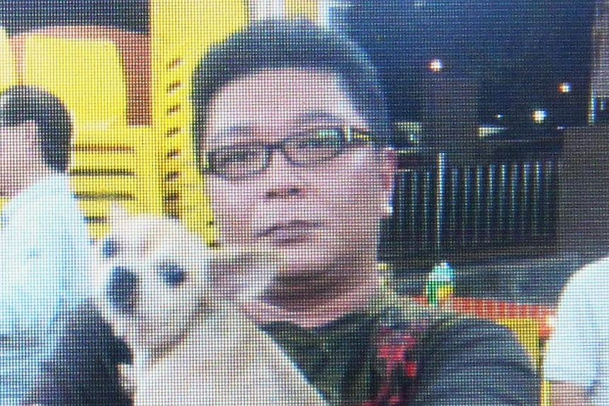 Mr Toh Meng Teck with his pet chihuahua Lucky, which died after it was hit by a cab on Feb 8, 2013.Hawker Koh Seng Hong, 50, was sentenced to eight months' jail on Monday for punching a taxi driver in the face twice after the driver had run ove
