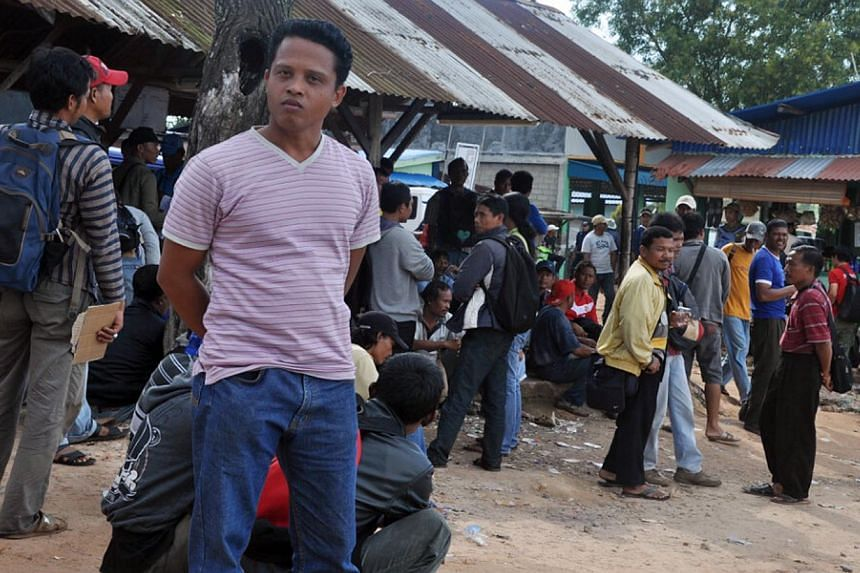 One of the 165 workers on strike at a pig farm in Pulau Bulan, near Batam. A deal has been reached to end a pay dispute at a pig farm near Batam which is the sole supplier of live pigs to Singapore. -- FILE PHOTO: F. PANGESTU