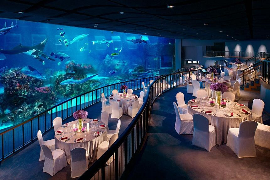 For the first time ever, 8ha S.E.A. Aquarium in Resorts World Sentosa was the venue for a wedding.-- PHOTO:RESORTS WORLD SENTOSA
