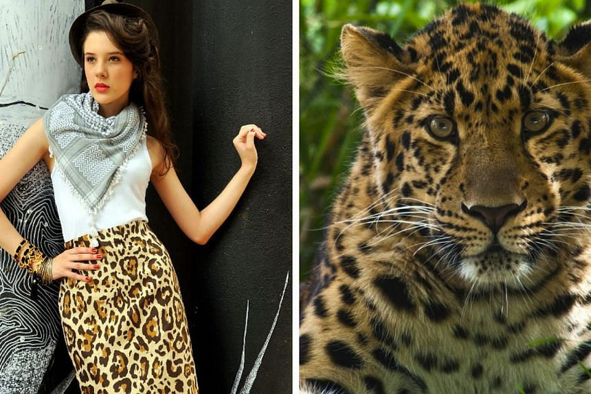 A model wearing a leopard print pencil skirt from Christian Dior.A British zoo said on Wednesday, Sept 25, 2013, it has banned visitors from wearing leopard or zebra print clothes because they are confusing the animals. -- FILE PHOTOS:DES