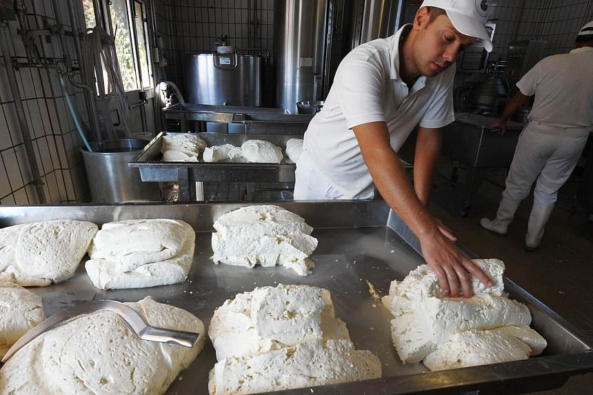 Employees make buffalo mozzarella at the Tenuta Vannulo dairy farm in Capaccio on Sept 3, 2013. Half-tonne black water buffaloes spend their days lounging on rubber mattresses, munching on organic hay or looking forward to vaporised showers that form