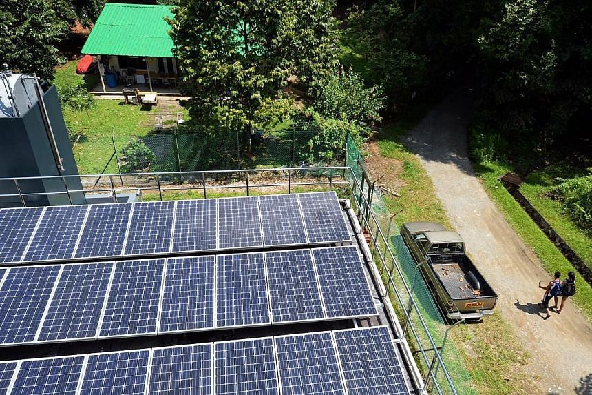 Solar panels at three Pulau Ubin sites generate electricity that is fed into a new micro-grid to power some of the island's homes and businesses.  Mr Tan said he will tap the grid for some of his shop's chillers.
