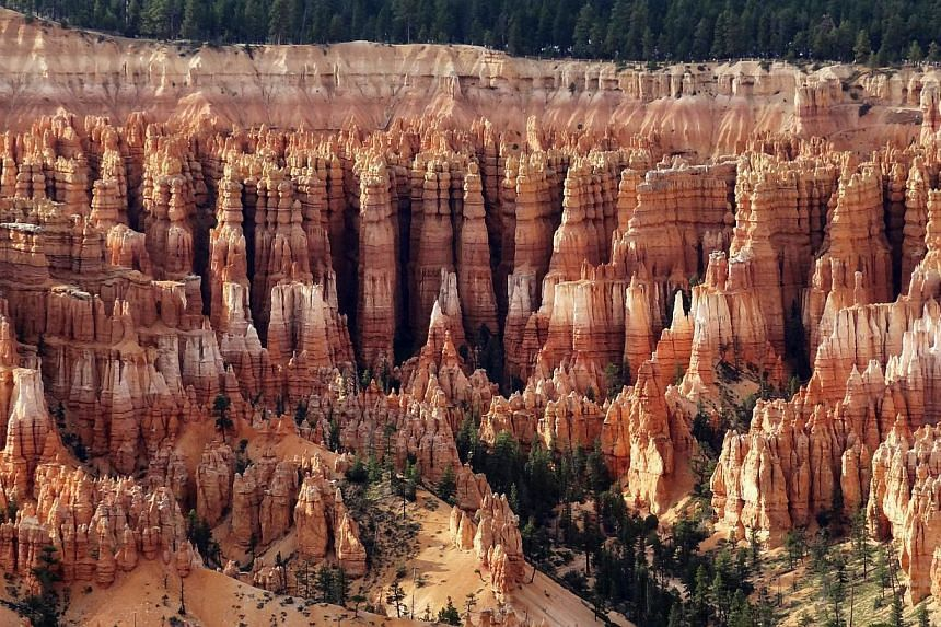 View of the Bryce Canyon National Park, Utah in this file photo on Aug 19, 2012. US national parks and monuments including the Statue of Liberty and the Grand Canyon are to reopen despite the federal shutdown, after states agreed to fund them tempora