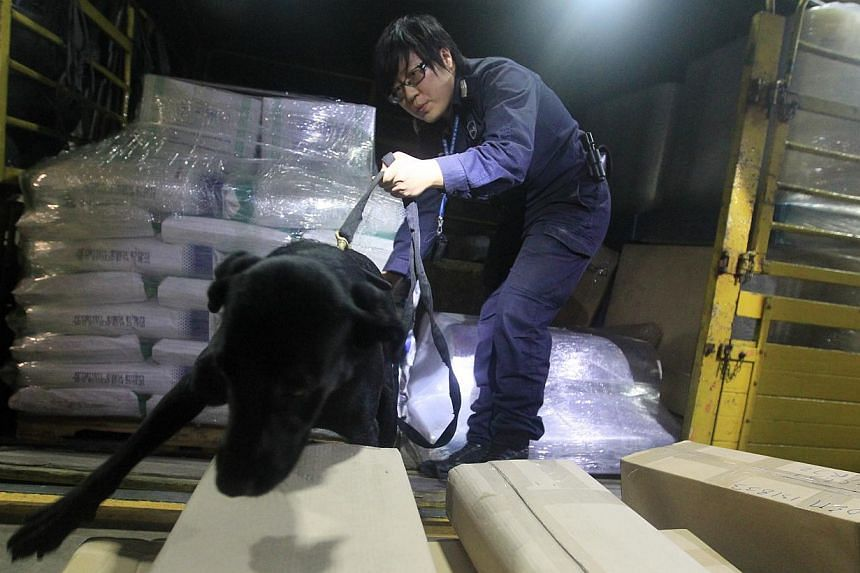 A black labrador sniffing a lorry shipment of cocktail napkins and plastic containers for drugs. The police K9 unit has a permanent detachment at Woodlands Checkpoint that assists the ICA in detecting drugs and explosives. -- PHOTOS: LIANHE ZAOBAO