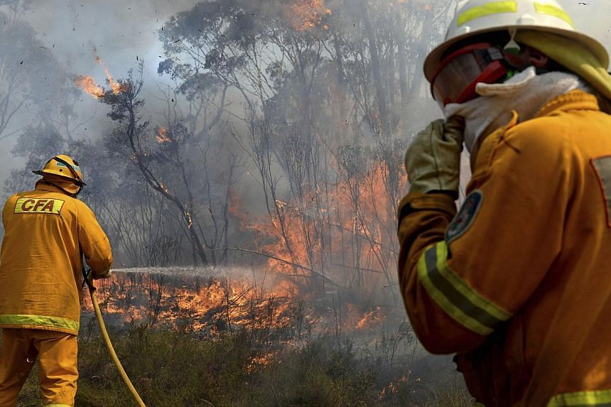 Firefighters work on putting in containment lines to help control a wildfire near the township of Bell, Australia, on Oct 21, 2013. Firefighters on Tuesday deliberately merged two major out-of-control blazes in south-eastern Australia in a desperate