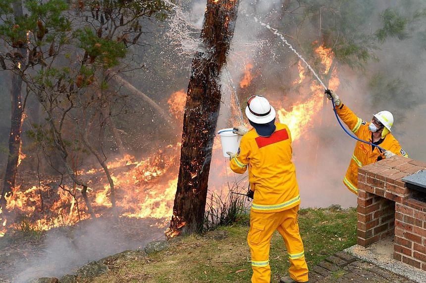 Firefighters work to contain fires from a resident's backyard at Faulconbridge in the Blue Mountains on Oct 22, 2013. Firefighters in Australia braced for hot, dry winds and soaring temperatures on Wednesday with lightning also posing a problem as th