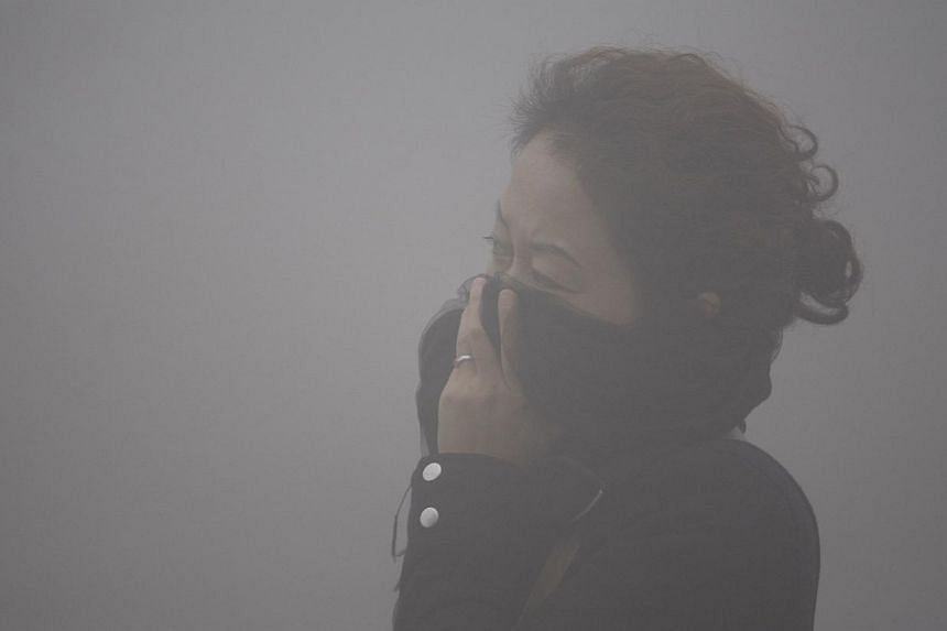A woman covers her mouth with her scarf in the smog in Harbin, north-east China's Heilongjiang province, on Oct 21, 2013. China's Environment Ministry said on Thursday it will send inspection teams to provinces and cities most seriously affected by s