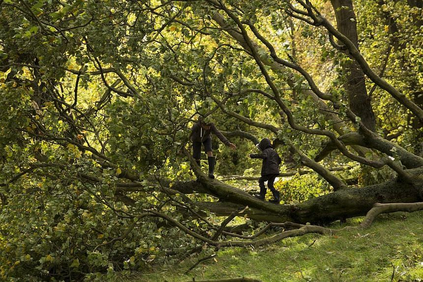 Two brothers play on a tree that was blown over in a storm on Hampstead Heath in north London, Monday, Oct 28, 2013. A major storm with hurricane-force gusts has lashed southern Britain, causing flooding and travel delays including the cancellation o