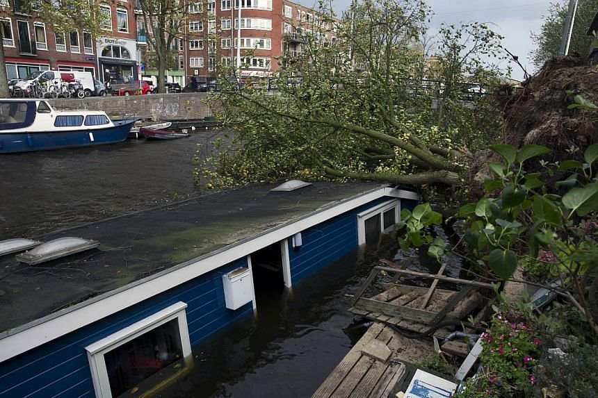 A picture shows an uprooted tree that fell on a houseboat at the Jacob van Lennepkade canal in Amsterdam following a heavy storm on Oct 28, 2013. -- PHOTO: AFP