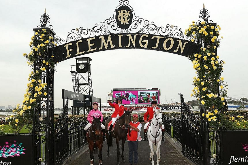 Australian television personality Rachael Finch (C) poses with the Emirates Melbourne Cup at this year's Melbourne Cup Carnival Launch at the historic Flemington Racecourse on October 28, 2013. Thefour-day horse racing carnival is expected to i
