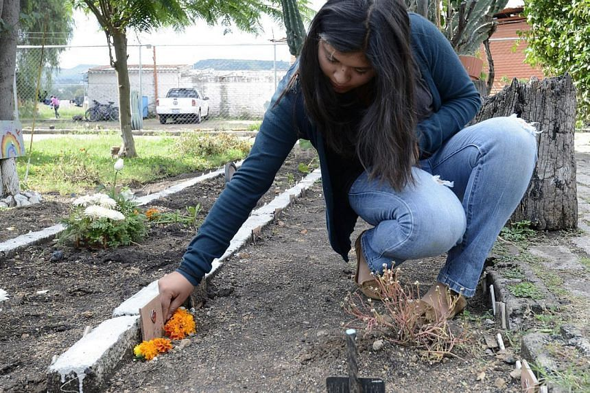 A woman puts flowers on her dog's grave at the pet cemetery in Corregidora, State of Queretaro, Mexico on Nov 1, 2013, the day before the commemoration of the Day of the Dead. -- PHOTO: AFP