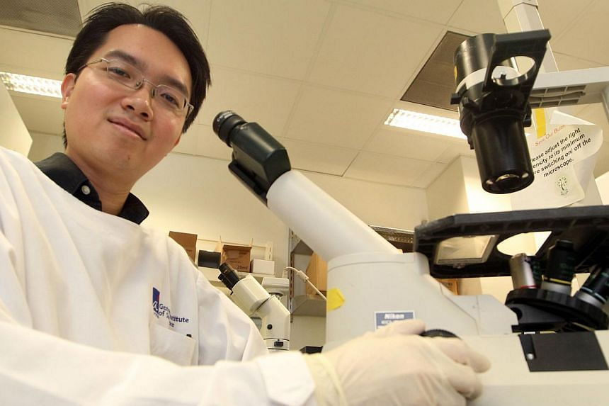 """Genome Institute of Singapore researcher Ng Shyh-Chang (above) and his collaborators found that a gene known as Lin28a enhanced metabolism in mitochondria, the energy-producing """"power plants"""" in cells. -- PHOTO: ZAOBAO"""