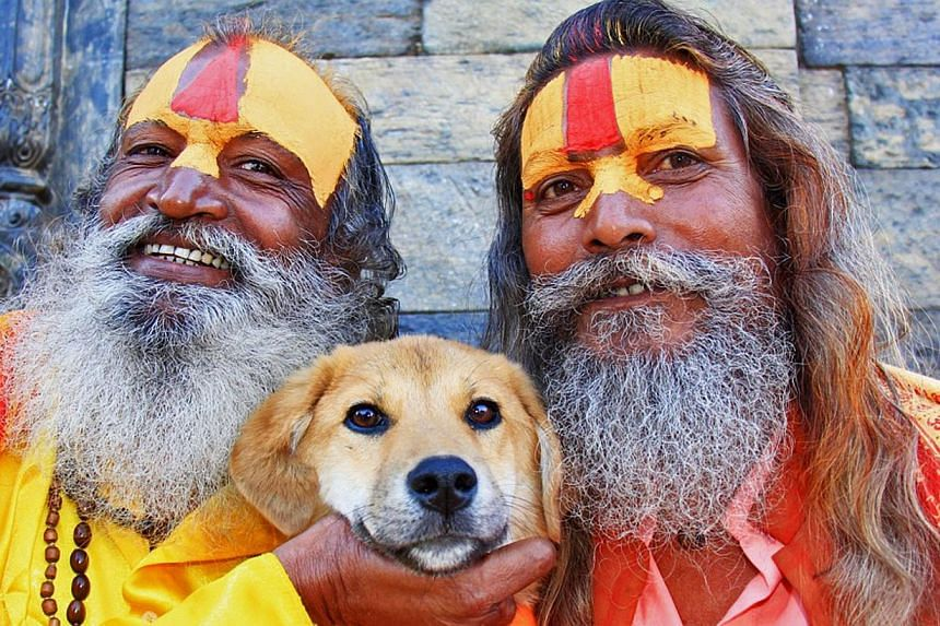 This undated handout photograph released by worldwooftour.com on Wednesday, Nov 13, 2013, shows adopted Indian dog named Rupee posing with Hindu saddhus (holy men) in Kathmandu. --PHOTO: AFP /WORLDWOOFTOUR.COM /JOANNE LEFSON