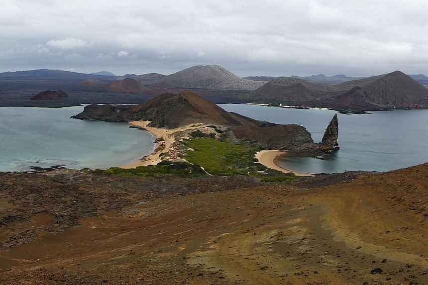 The view from the top of Bartolome Island in Galapagos on Aug 23, 2013. A scientific study out on Thursday identifies 78 sites worldwide, including the Galapagos Islands, in dire need of environmental protection because they harbor species that could