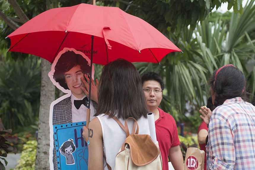 A fan checks out a live-size standee of One Direction member Harry Styles, placed at a cotton-candy stall at the 1D Carnival.