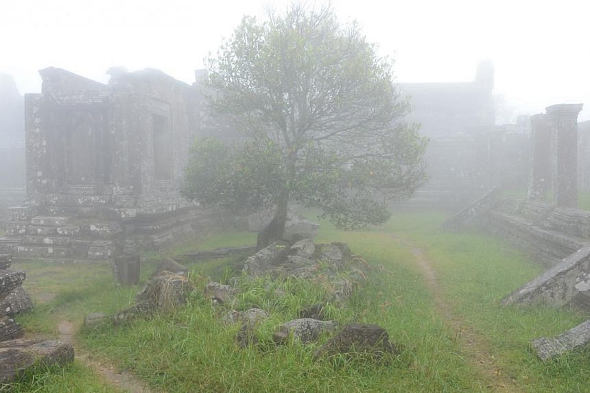 A tree standing among the ruins of Preah Vihear temple complex, which is shrouded in clouds in the morning. -- ST PHOTO: TAN HUI YEE