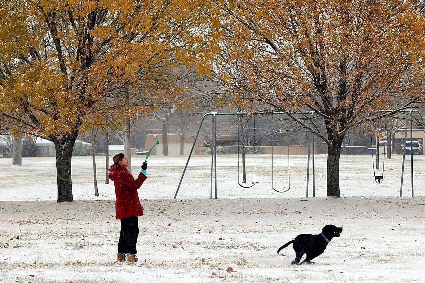Enjoying the morning snow, Ms Valerie Thompson tosses a ball for her dog Gus at Stardust Skies Park in Albuquerque, New Mexico, on Sunday, Nov 24, 2013, after a winter storm hits New Mexico over the weekend. Snow continued to fall in the US South-wes