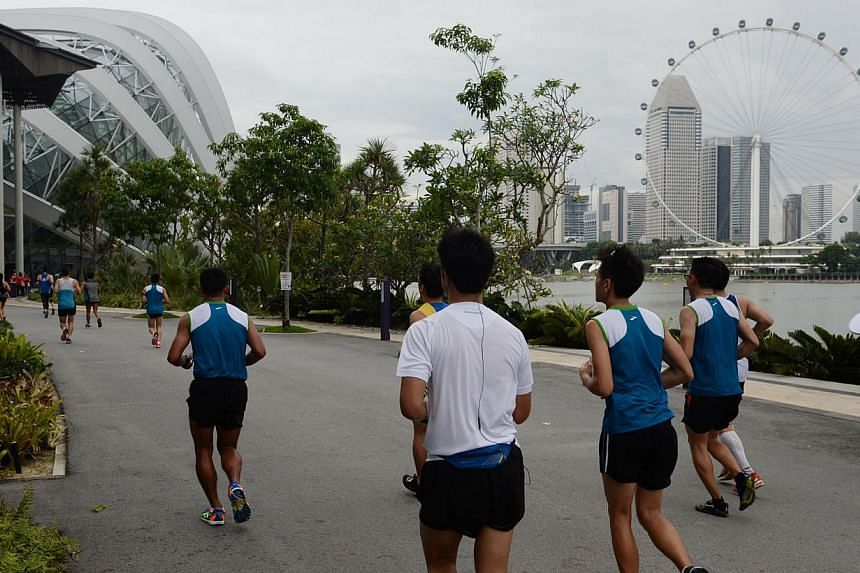Runners run through the Gardens By The Bay during the Standard Chartered Marathon 2013 on Sunday, Dec 1, 2013. -- ST PHOTO: RAJ NADARAJAN
