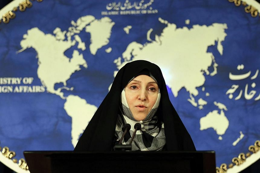 Iran's foreign ministry spokeswoman Marzieh Afkham speaks to the media during the weekly press conference in Teheran, on Nov 5, 2013. Iran is to hold new talks with major powers on its nuclear programme next week, buoyed by a landmark interim de