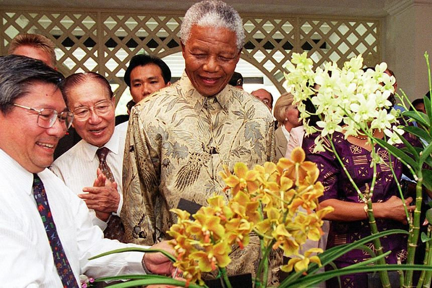National Parks Board chief executive officer Tan Wee Kiat (left) placing a plaque to mark the Vandaenopsis Nelson Mandela orchid, a hybrid named after Mr Mandela (right), while Board chairman Tan Keong Choon (centre) applauds. The event took place du