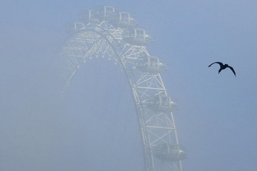 A bird flies past the London Eye, on a foggy day in central London,on Wednesday, Dec 11, 2013. -- PHOTO: REUTERS