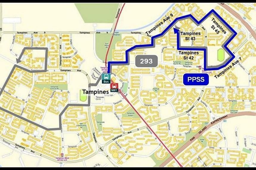 Peak Period Short Service complementing Bus Service 293:Tampines MRT Station/Bus Interchange to Tampines Avenue 9/St 45.-- PHOTO:LAND TRANSPORT AUTHORITY