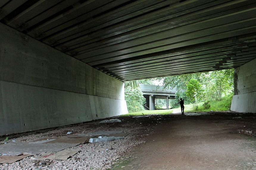 The Urban Redevelopment Authority said in a press statement on Monday, Dec 23, 2013, that it had partnered the National Arts Council (NAC) to create the art space beneath the Commonwealth Avenue viaduct structure along the corridor. -- ST PHOTO:&nbsp