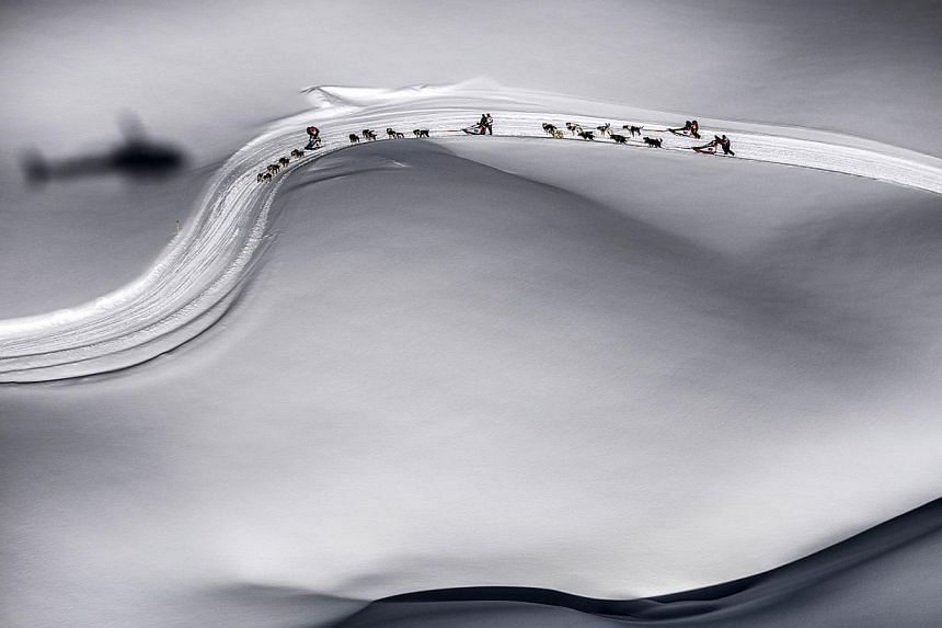 Mushers compete during the departure of a stage of the Grande Odyssee sledding racein Megeveon Jan 18 2013. FILE PHOTO: AFP