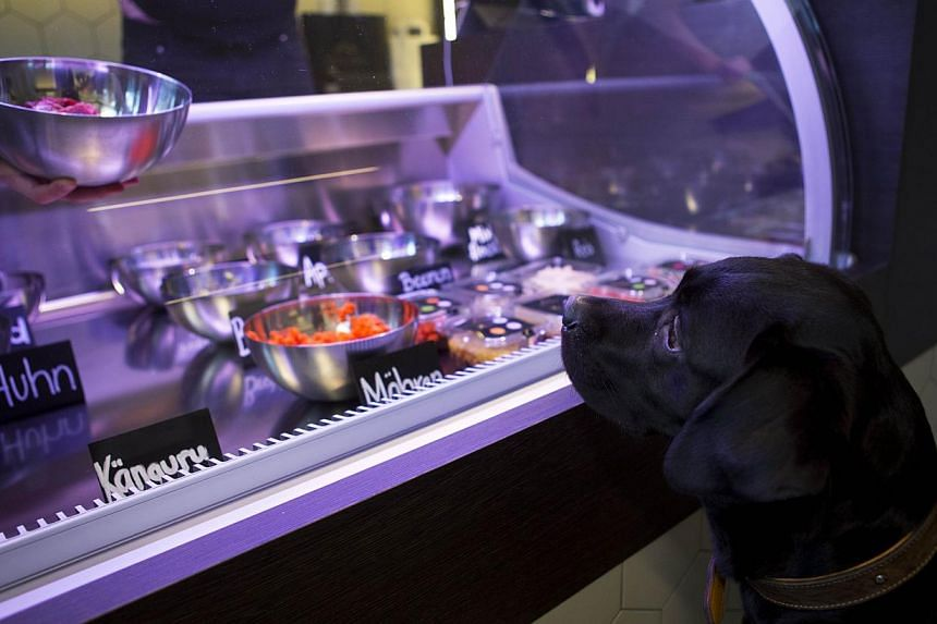 A dog named Lilly looks on as store manager Katharina Warkalla mixes a meal for her in Berlin's Gruenewald district on Jan 2, 2014. The shop mixes fresh meats, vegetables and other ingredients to prepare meals for the animals which can be eaten on si