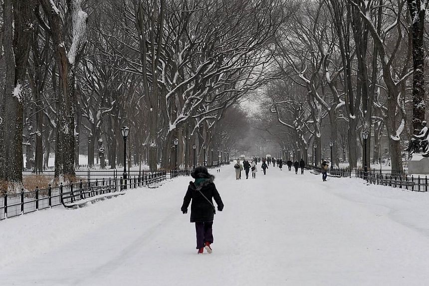 People walk in the snow through Central Park on Jan 3, 2014 in New York, the morning after the first major winter storm of 2014. A fierce winter storm brought chaos to the northern United States (US) on Friday, killing at least 11 people and for