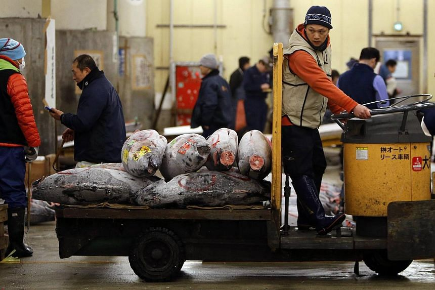 A wholesaler transports frozen tunas at the Tsukiji market in Tokyo on Jan 5, 2014. -- PHOTO: REUTERS