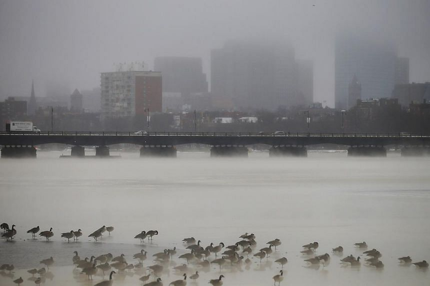 Birds gather on the partially frozen Charles River in front of the Boston skyline during winter in Cambridge, Massachusetts Jan 6, 2014. A blast of Arctic air gripped the vast middle of the United States (US) on Monday, bringing the coldest temp