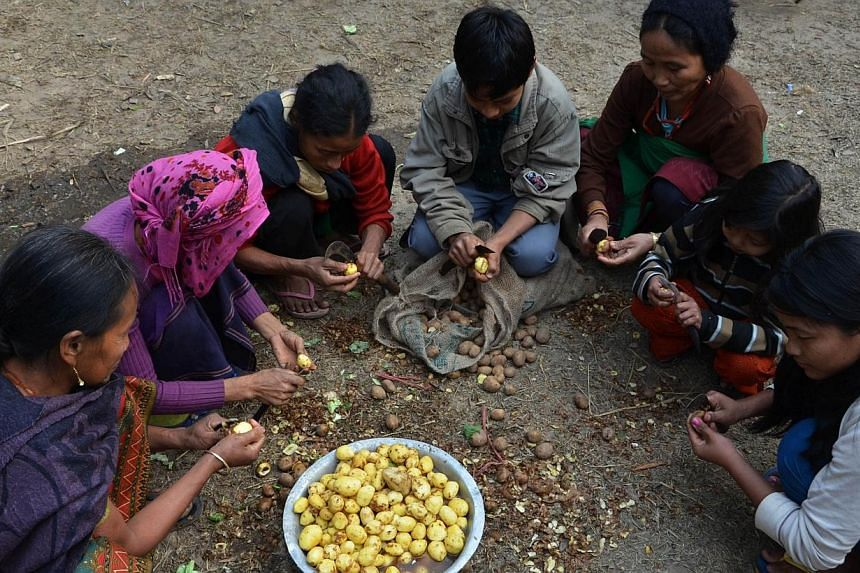 Displaced members of the Rengma Naga tribe peel potatoes at a relief camp at a school in the Karbi Anglong district of India's north-eastern state of Assam on Jan 7, 2014.Clashes between tribes in India's restive north-east Assam state have lef
