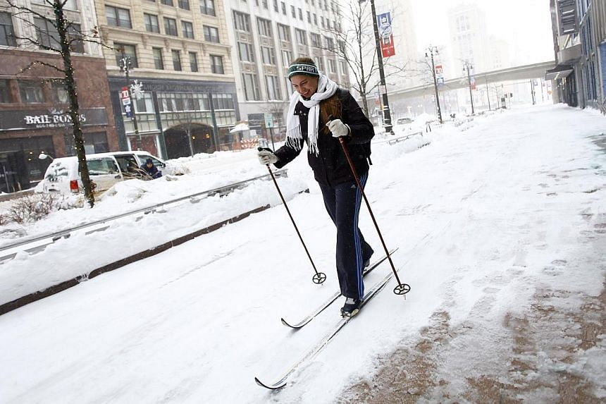 Ms Alison Mueller skies to work through several inches of snow along Woodward Avenue as the area deals with record breaking freezing weather on Jan 6, 2014 in Detroit, Michigan.After two days of US weather so cold that at least one polar bear a