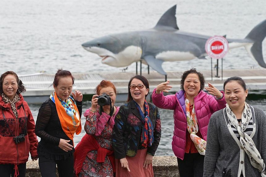 Chinese tourists posing for photographs in front of a gigantic 7.4m great white shark replica in Sydney Harbour on November 26, 2013. -- FILE PHOTO: AFP