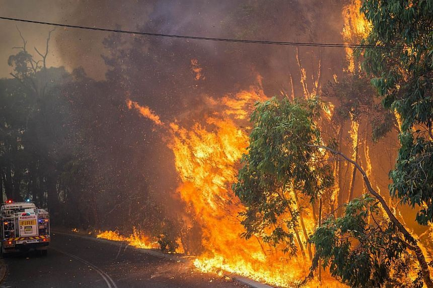 This handout photo taken on Jan 12, 2014 and supplied by Australia's Department of Fire and Emergency Services (DFES) shows a wildfire along the edge of the road next to a firetruck in the Stoneville area, a suburb east of Perth in the state of Weste