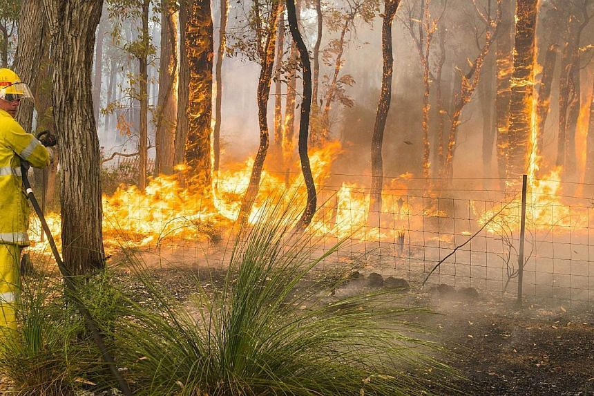 This handout photo taken on Jan 12, 2014 and supplied by Australia's Department of Fire and Emergency Services (DFES) shows firefighters working to contain wildfires in the Stoneville area, a suburb east of Perth in the state of Western Australia. &n