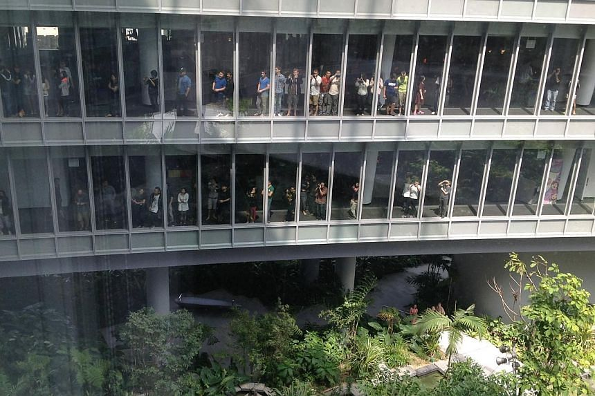 People at the Sandcrawler Building watching the opening ceremony on Jan 16, 2014. -- ST PHOTO: GOH CHIN LIAN