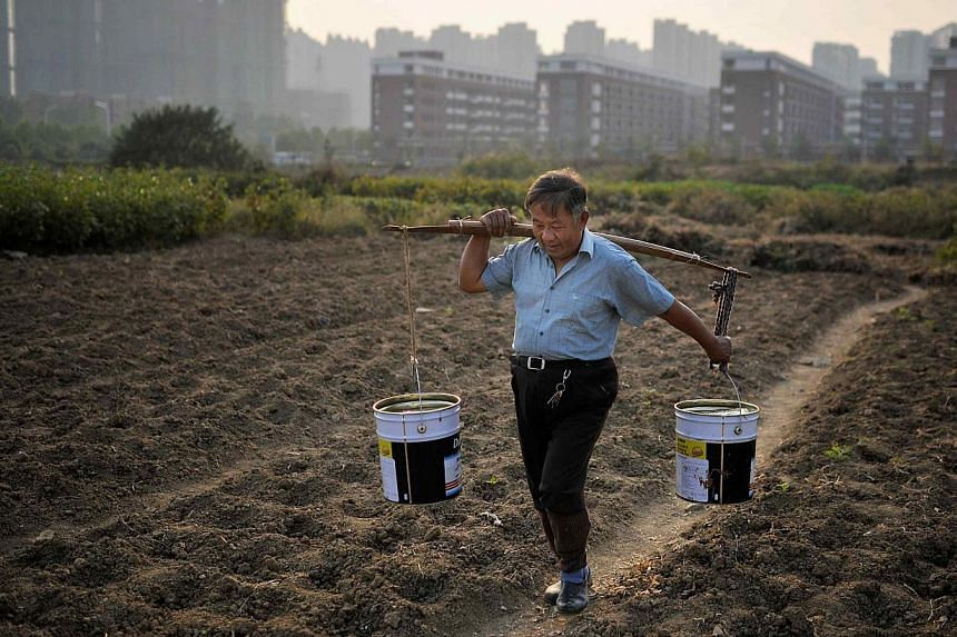 A man carrying buckets of water at a vegetable field, near a new residential compound, in Hefei, Anhui province, in this November 13, 2013 file picture. China's top policy priorities for 2014 will be improving the rural environment and maintaining fo