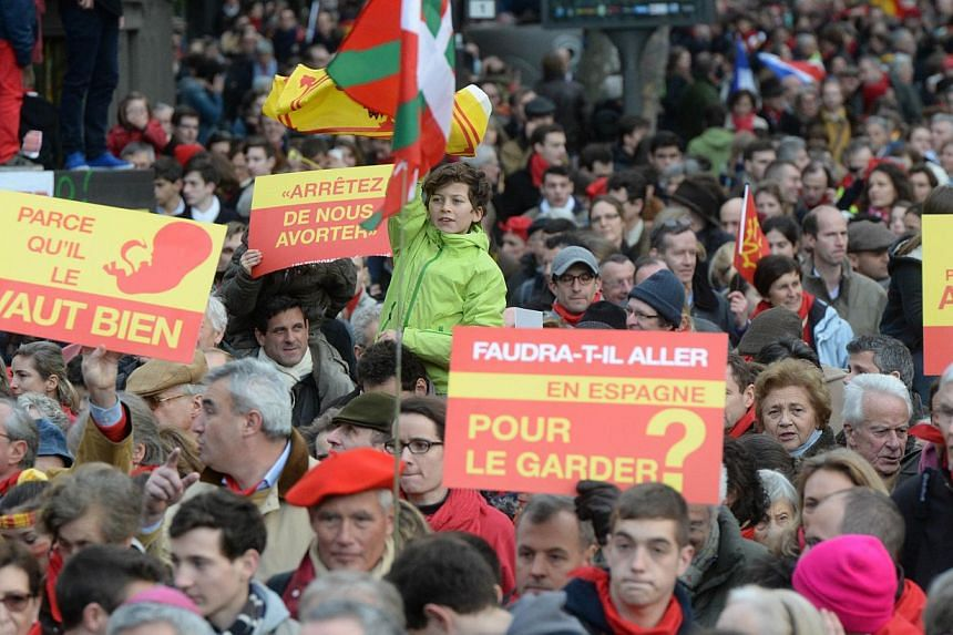 """Hundreds of people take part in a """"March for life"""", a demonstration to protest against abortion on Jan 19, 2014 in Paris. Thousands of people protested abortion in France in a Paris rally on Sunday on the eve of a parliamentary debate on a bill that"""