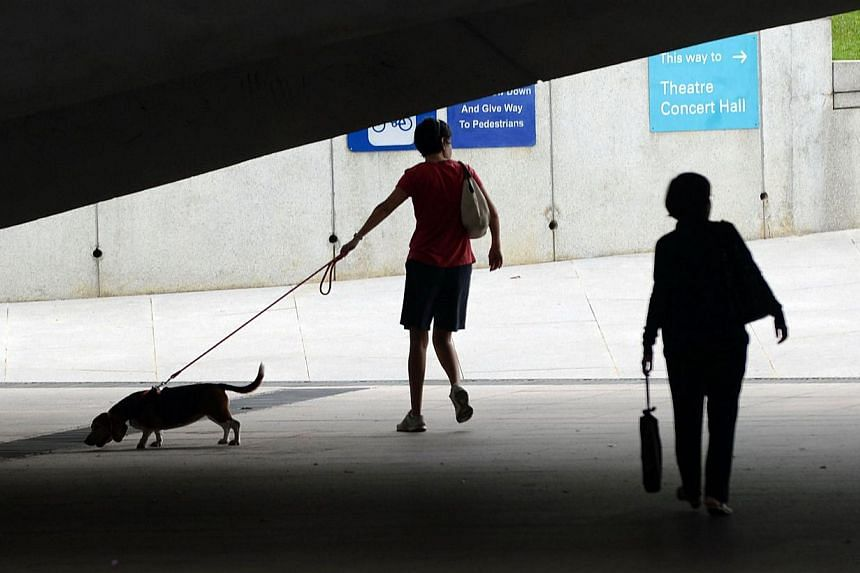 A woman (left) walks with her pet dog on a street in Singapore on Jan 14, 2014. Singapore will take more steps to protect animal welfare by introducing harsher penalties for animal abuse, said the country's law minister K Shanmugam. -- FILE PHOTO: AF