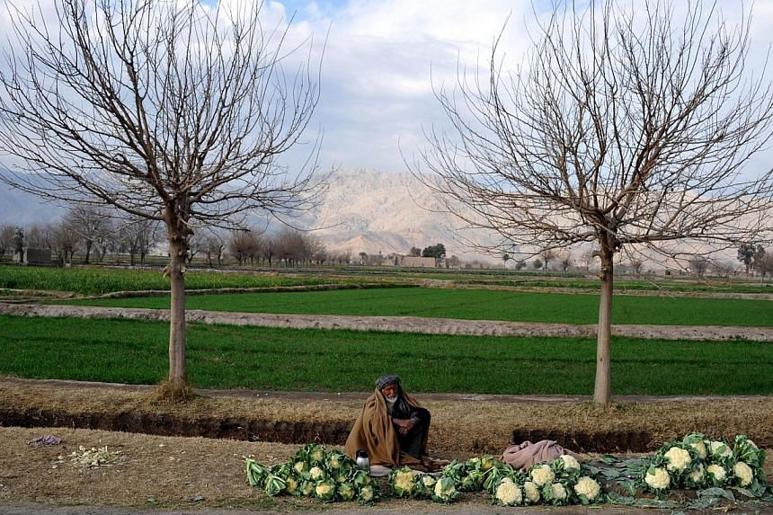 An Afghan vegetable vendor waits for customers at the roadside on the outskirts of Jalalabad, Nangarhar province, on Jan 21, 2014. See more pictures from around the world in Through The Lens' Today in Pictures. -- PHOTO: AFP