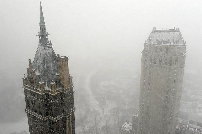 A view of Central Park in the snow as New Yorkers get hit with a winter storm in the north-east on Jan 21, 2014, that could bring up to 30cm of snow in the city. -- PHOTO: AFP